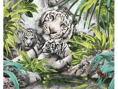 Bengalski tygrys