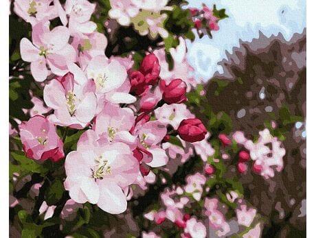 Majowe kwiaty malowanie po numerach
