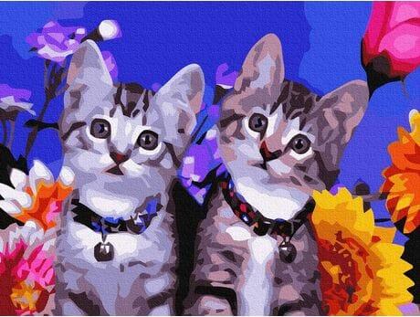 Ciekawość kotków malowanie po numerach