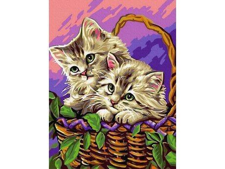 Kociaki w koszyku malowanie po numerach