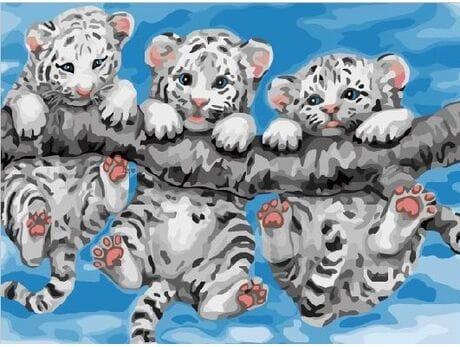 Tygryski na gałęzi
