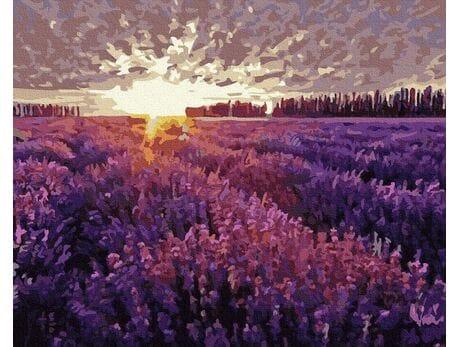 Zachód słońca nad polem lawendy malowanie po numerach