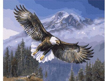 Duch wolności