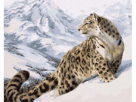 Śnieżna pantera