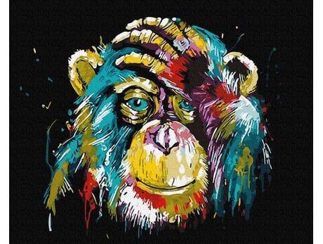 Tęczowy szympans malowanie po numerach