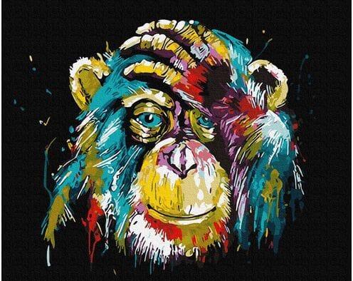 Tęczowy szympans
