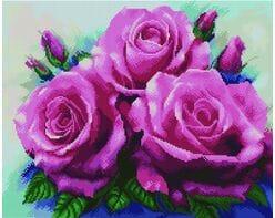 Piękne róże