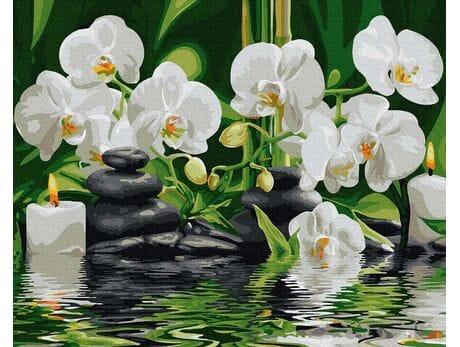 Storczyki w cichej wodzie malowanie po numerach