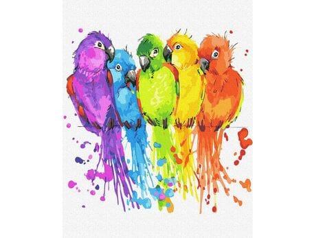 Kolorowe papużki malowanie po numerach
