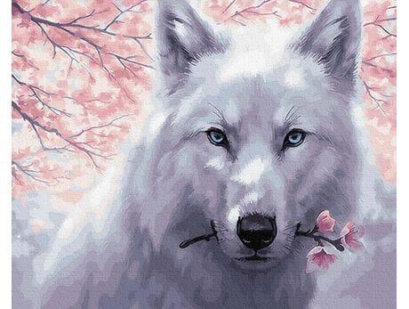 Biały wilk malowanie po numerach