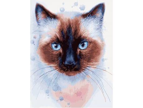 Kot syjamski malowanie po numerach