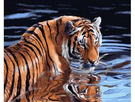 Tygrys i woda malowanie po numerach