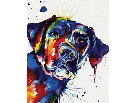 Kolorowy pies malowanie po numerach