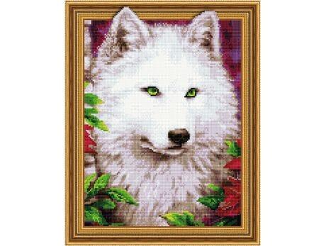 Spojrzenie zielonych oczu diamentowa mozaika