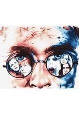 Harry Potter - Życie pośród Magii