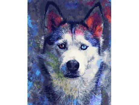 Spojrzenie kolorowych oczu malowanie po numerach
