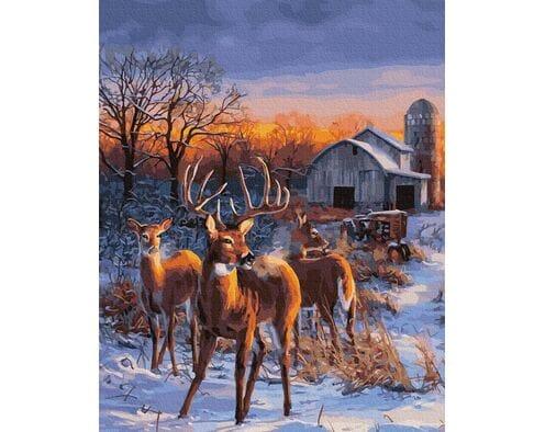 Rykowisko jeleni