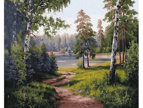 Leśna droga malowanie po numerach