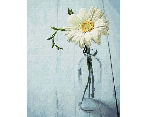 Kwiatek w dzbanku