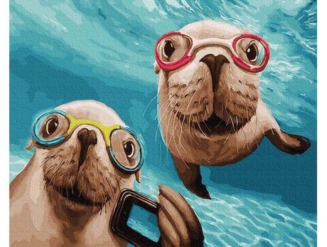 Ciekawskie foczki malowanie po numerach