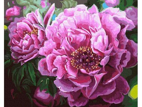 Kwitnące Peonie malowanie po numerach