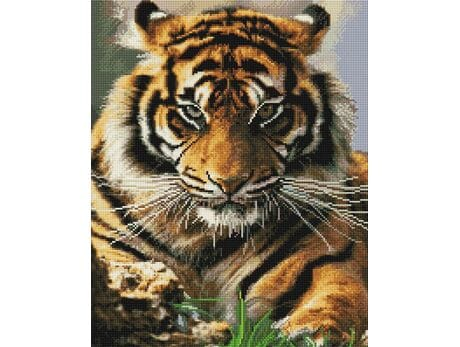 Tygrysie spojrzenie diamentowa mozaika