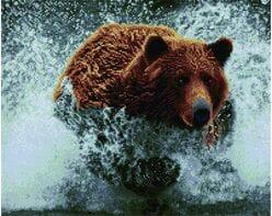 Biegnący niedźwiedź