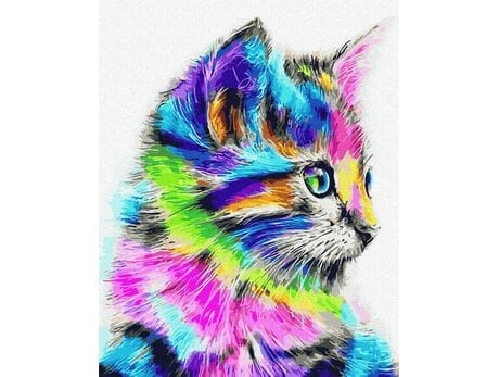 Kot holo malowanie po numerach