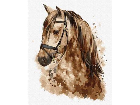 Piękny koń malowanie po numerach