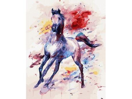 Rozbrykany koń malowanie po numerach