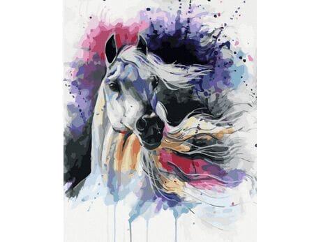 Koń Arabski malowanie po numerach