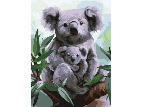 Koala malowanie po numerach