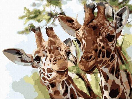 Żyrafy malowanie po numerach