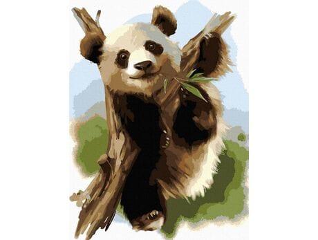 Niedźwiadek bambusowy malowanie po numerach