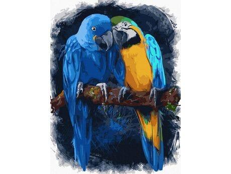 Papużki nierozłączki malowanie po numerach
