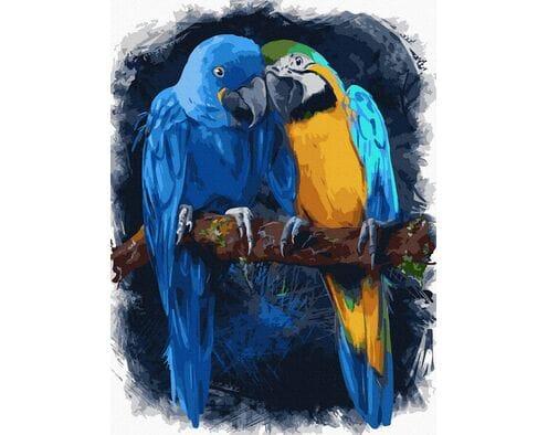 Papużki nierozłączki