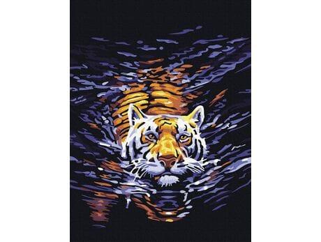 Pływający tygrys malowanie po numerach