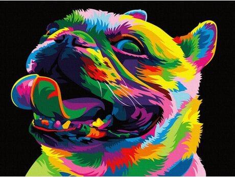 Tęczowy Bulldog malowanie po numerach