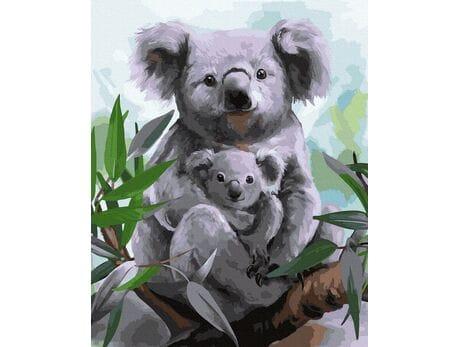 Koale malowanie po numerach