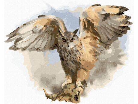 Sowa rozłożyła skrzydła malowanie po numerach