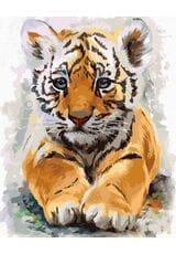 Słodkie tygrysiątko