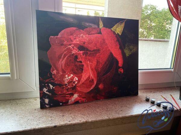 Delikatny pąk róży